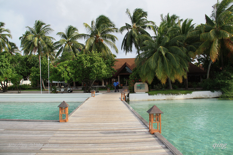 度假马尔代夫04-- 椰子岛酒店