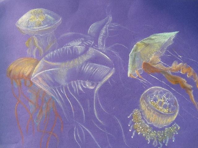 水母是一种低等的动物,在蓝色的海洋里,这些游动着的色彩各异的水母显得十分美丽。水母的出现比恐龙还早,可追溯到6.5亿年前。水母的种类很多,全世界大约有250种左右,我简单的画出了几种,我喜欢的。水母虽然是低等的动物,却三代同堂,令人羡慕。水母生出小水母,小水母虽能独立生存,但亲子之间似乎感情深厚,不忍分离,因此小水母都依附在水母身体上。不久之后,小水母生出孙子辈的水母,依然紧密联系在一起。