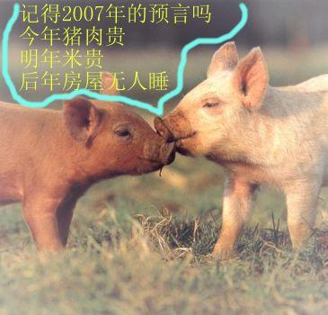 动物世界——猪,狐狸,狼,老鼠,王八,驴.