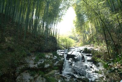宣城夏林风景区