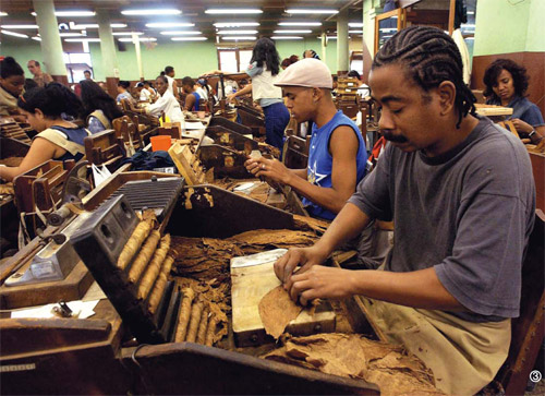 雪茄手工制作过程
