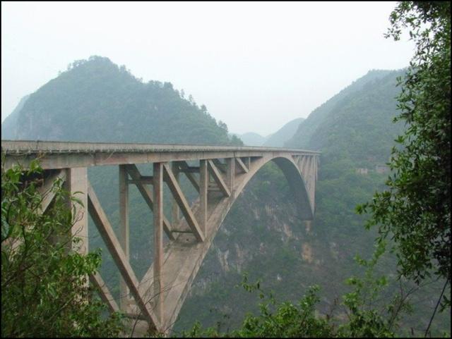 朱家山原始森林