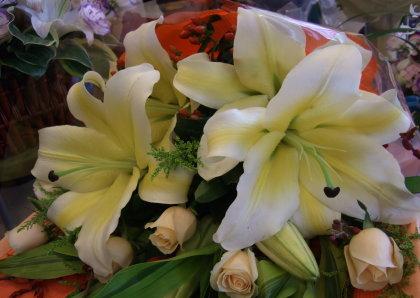 上海花店里惹人喜爱的花