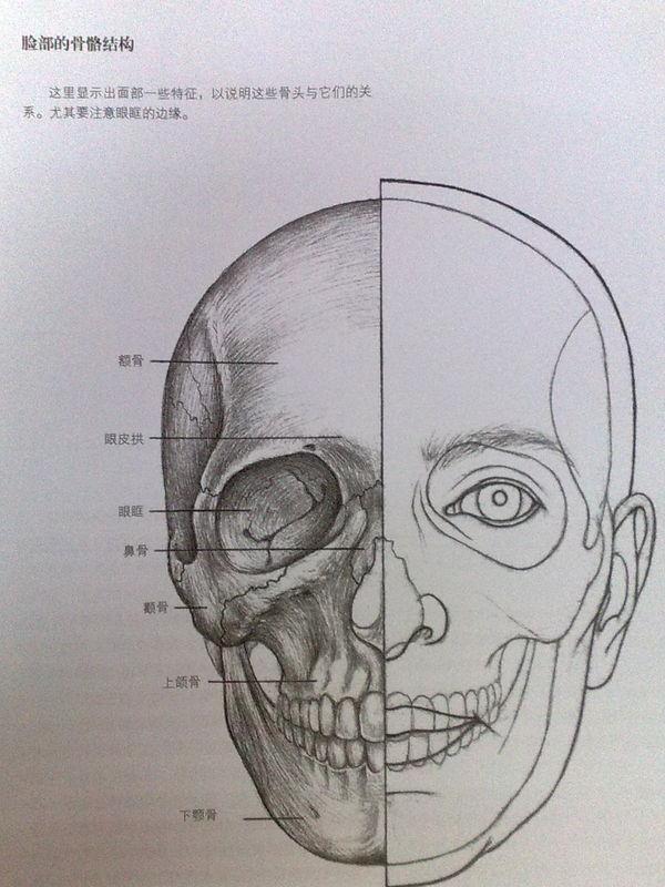正面嘴唇法步骤图素描