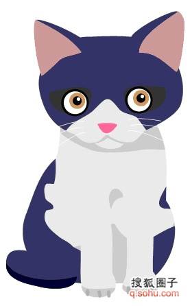 猫咪的剪贴画