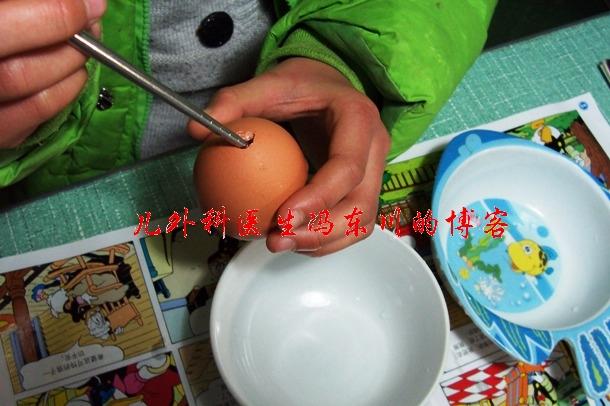 DIY蛋壳虎--虎年春节的亲子活动 - lancet19 - lancet19的博客