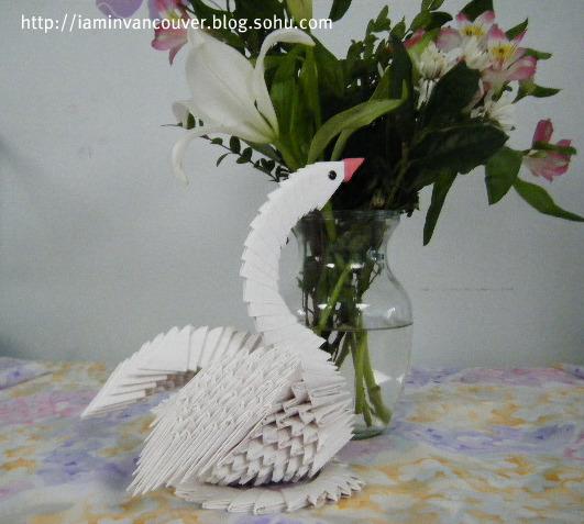 壁纸 动物 鸟 鸟类 531_477
