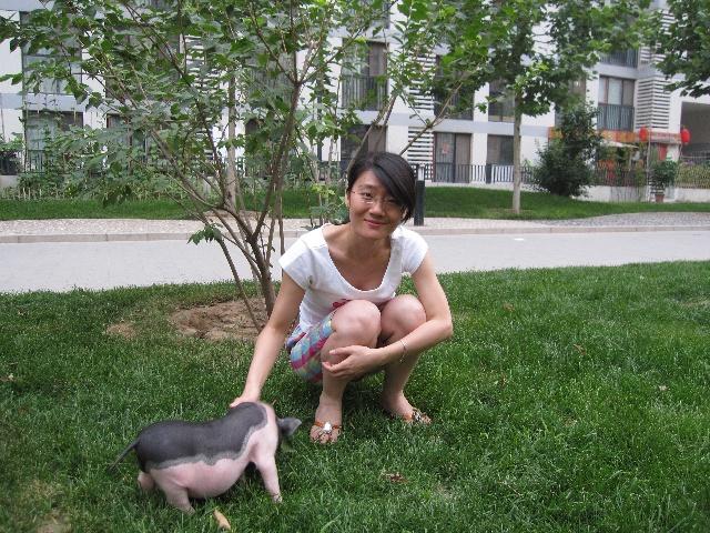 小宠物猪-吵吵闹闹过日子-搜狐博客